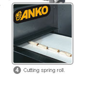 FSP - Cutting spring roll